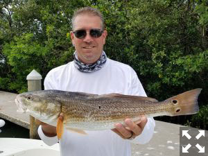 Tony Dolby out for a little fun on the water caught this nice redfish.