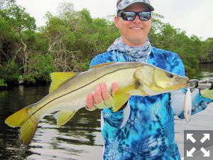October should be a good month for snook on the flats. Kyle Ruffing, from Sarasota, caught and released this one on a top water plug while fishing Tampa Bay with Capt. Rick Grassett in a previous October.