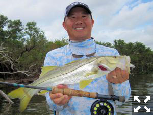 Jon Yenari, from Sarasota, caught and released this snook on a fly while fishing Tampa Bay with Capt. Rick Grassett in a previous October.