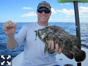 Steve caught this nice looking tripletail.