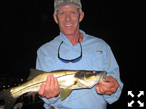 Stewart Lavelle' from Sarasota, had some action catching and releasing snook on flies while fishing dock lights on a couple of different trips recently with Capt. Rick Grassett.
