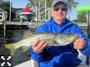 Rick Anderson, from IL, with a snook he caught and released on a CAL jig with a shad tail while fishing Little Sarasota Bay with Capt. Rick Grassett.