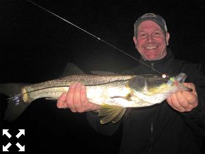 Tim Hearon, from Siesta Key, with a snook caught and released on a fly while fishing the ICW at night in the ICW with Capt. Rick Grassett recently.