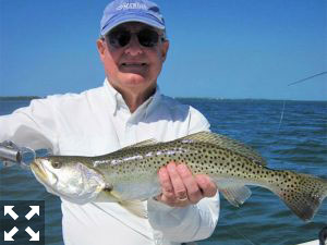 Trout fishing should be good during March. Alan Sugar, from MI, caught and released this one on an Ultra Hair Clouser fly while fishing Sarasota Bay with Capt. Rick Grassett in a previous March.