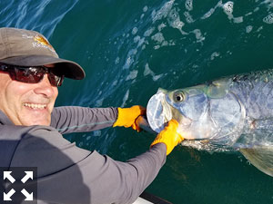 There's really nothing quite like battling a tarpon.