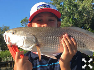 Will Hartman with a nice redfish he caught this past week.