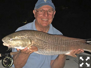 Robin Calitri, from NH, caught this beautiful 29-inch redfish fishing the dock lights.